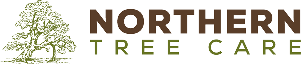 Northern Tree Care